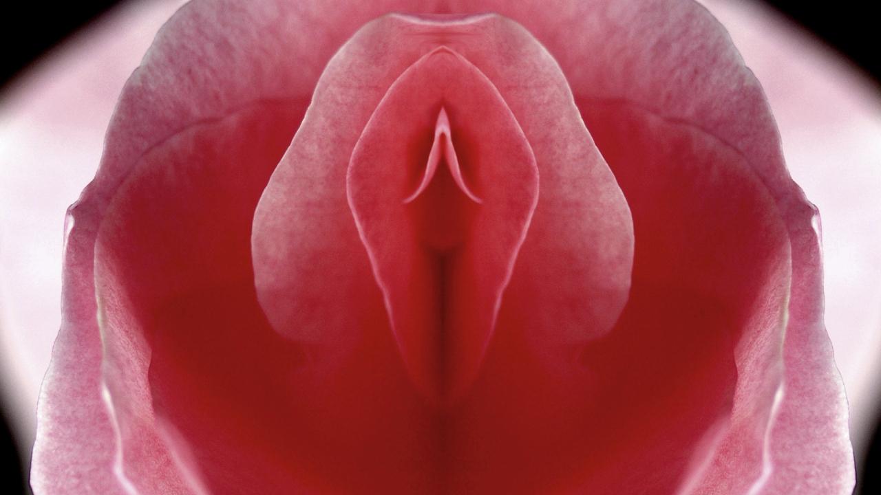 женское влагалище крупным планом красиво